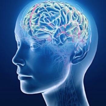 Aju ja neuroloogia
